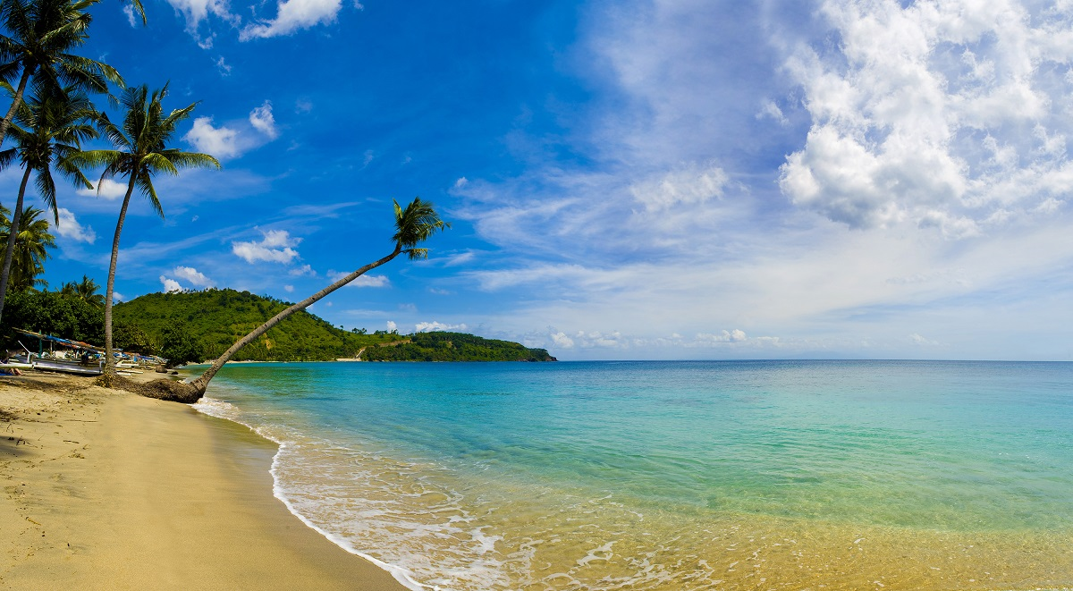 21 May 2011, Lombok, Indonesia --- Panorama of an overhanging palm tree at Nippah Beach on tropical Lombok Island, Indonesia, Southeast Asia, Asia --- Image by © Matthew Williams-Ellis/Robert Harding World Imagery/Corbis