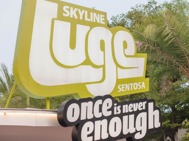 luge-and-skyride